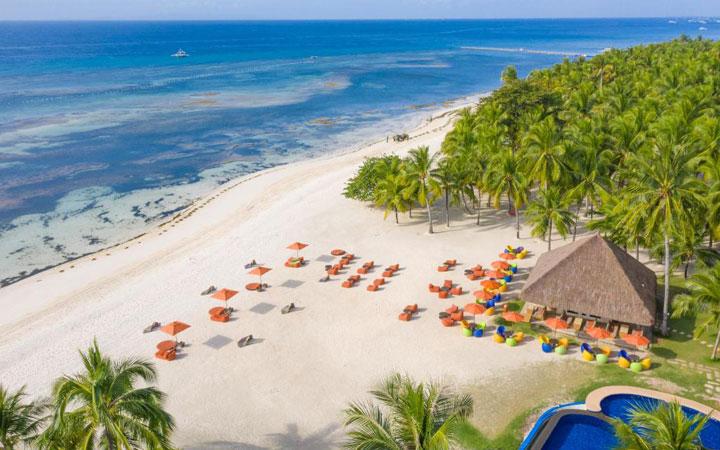 Bohol South Palms 3